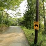 神社近くの旧道